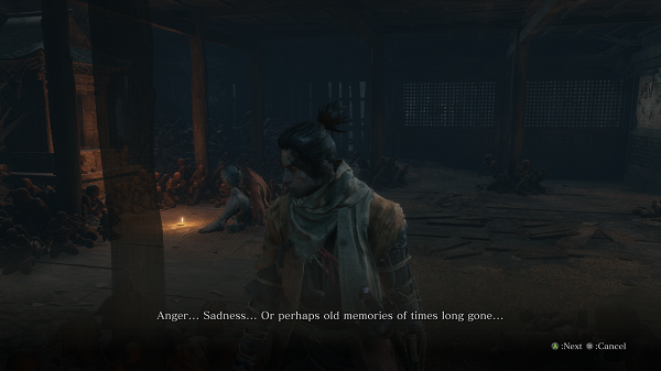 Sekiro B Review 2
