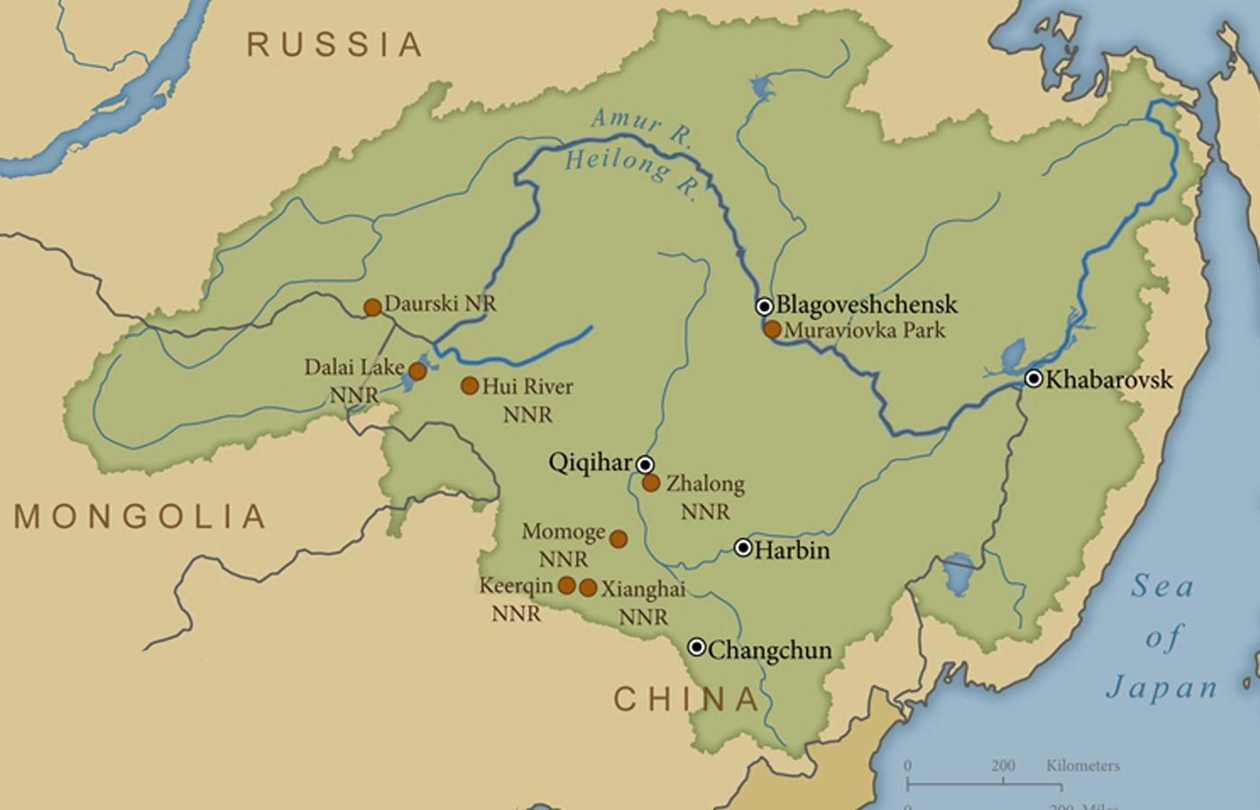 اولین تله کابین بین مرزی جهان؛ سفر هوایی از روسیه به چین در تنها 8 دقیقه